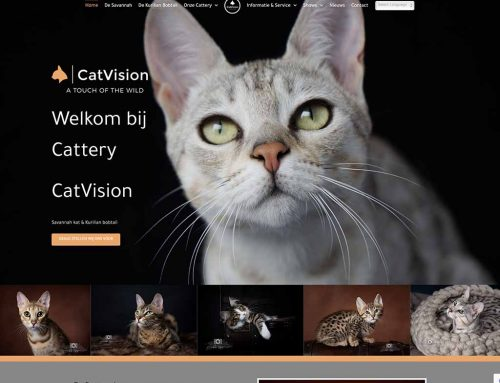 Website voor Cattery CatVision